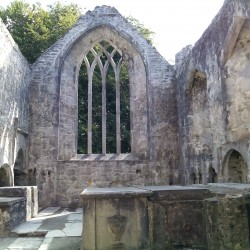 Muckross Abbey – Killarney National Park