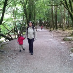 Indo para a Torc Waterfall – Killarney National Park