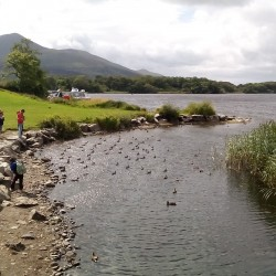 Lago do Ross Castle – Killarney National Park